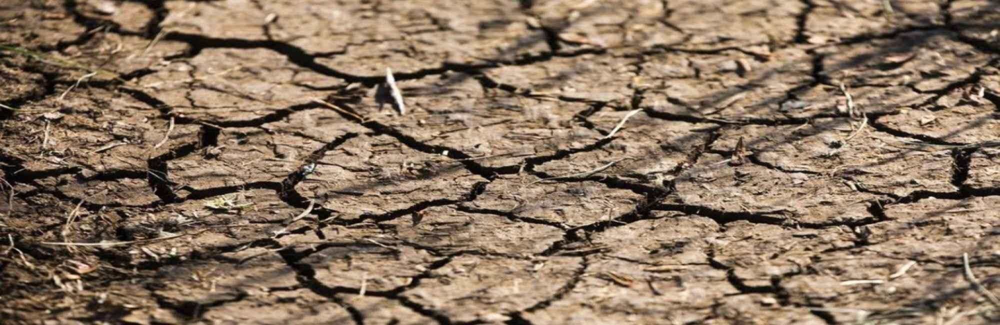 vigilance sècheresse